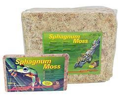 Lucky Reptile Sphagnum Moss Ziegel 100g