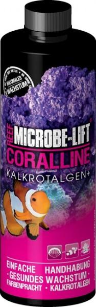 MICROBE-LIFT - Coralline Kalkrotalgen