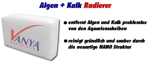 Vanya Algen + Kalkradierer