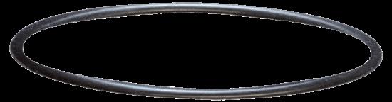 sera Filterkopf-Dichtung für 130, 130+UV